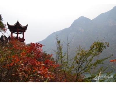 冬日三峡-巫山红叶两日游